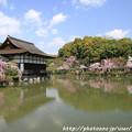 Photos: IMG_3306平安神宮・東神苑