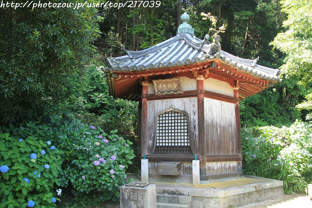 IMG_5441矢田寺・舎利堂