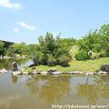 Photos: IMG_5671日本庭園・心字池