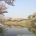 写真: IMG_8085東御屋敷跡公園・お堀