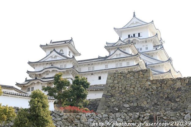 IMG_8148姫路城(国宝)