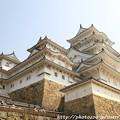 Photos: IMG_8151備前丸・彦根城(国宝)