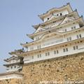 写真: IMG_8155備前丸・彦根城(国宝)