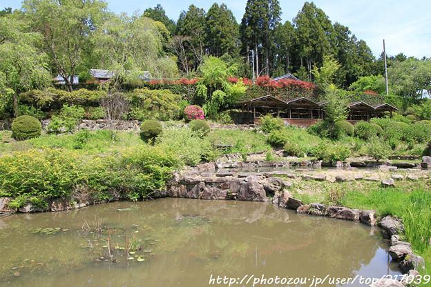 IMG_8313花の郷 滝谷花しょうぶ園