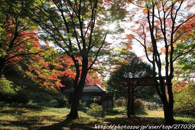 IMG_9090鳥見山公園・鳥見神社