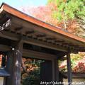 Photos: IMG_9101圓成寺