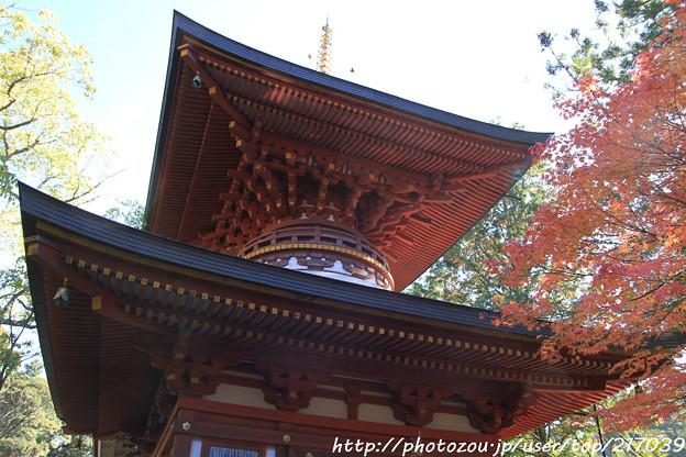 IMG_9104圓成寺・多宝塔