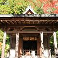 Photos: IMG_9112圓成寺・護摩堂