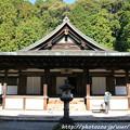Photos: IMG_9113圓成寺・本堂(阿弥陀堂)(重要文化財)