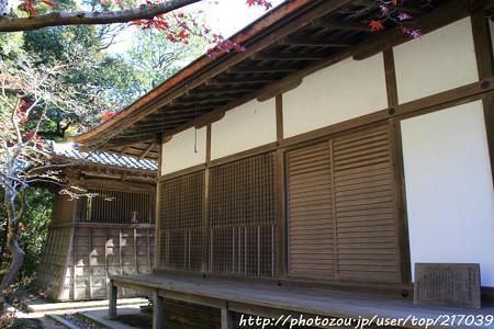 IMG_9115圓成寺・鎮守拝殿と鐘楼