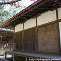 Photos: IMG_9115圓成寺・鎮守拝殿と鐘楼
