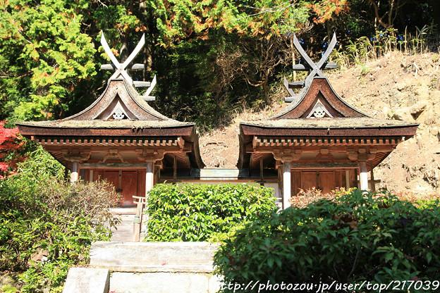 IMG_9116圓成寺・春日堂(国宝)&白山堂(国宝)