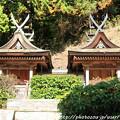 Photos: IMG_9116圓成寺・春日堂(国宝)&白山堂(国宝)