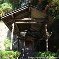 Photos: IMG_9118圓成寺・宇賀神本殿(重要文化財)
