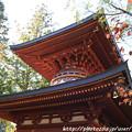 Photos: IMG_9121圓成寺・多宝塔