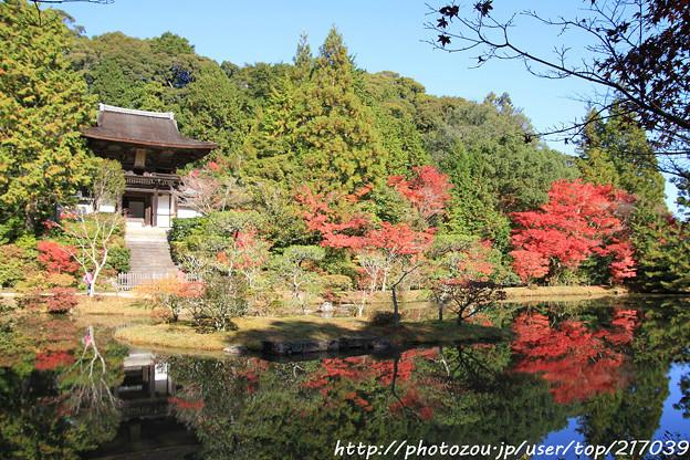 IMG_9130圓成寺・庭園