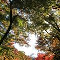Photos: IMG_9141正暦寺・紅葉