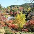 Photos: IMG_9146正暦寺