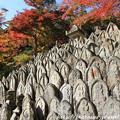 IMG_9150正暦寺・僧侶の墓石群