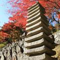 IMG_9151正暦寺・十三重塔と僧侶の墓石群