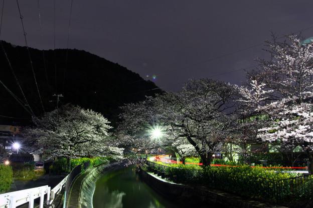 Photos: 山中疏水道