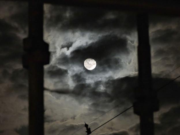 Photos: 怪しげな夜
