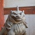 写真: 京都 仁和寺 狛犬