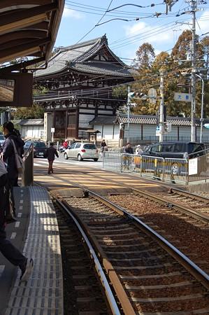 京都特別公開 133