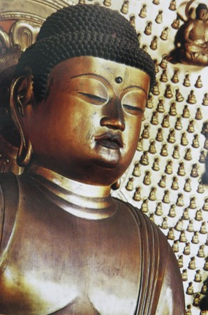 吉田寺 本尊丈六阿弥陀坐像 2014年02月17日_P2170917