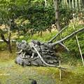 高台寺 P5010558