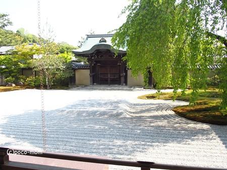 高台寺勅使門 P5010503