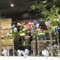 写真: 渋谷bunkamura フラワーショップ エルベシャトランのウィンドウ IMG_0845