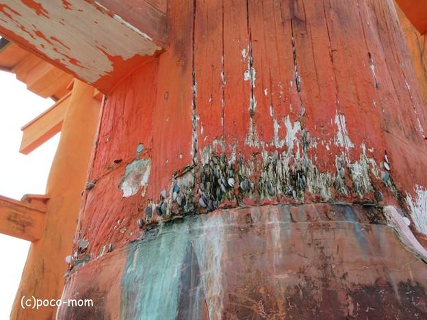 写真: 厳島神社 IMG_0973