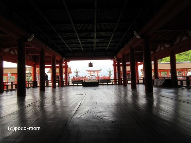 写真: 厳島神社 IMG_1008