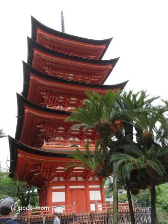 厳島神社 IMG_1053