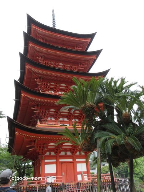 写真: 厳島神社 IMG_1053