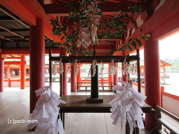 写真: 厳島神社 IMG_0986