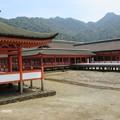 写真: 厳島神社 IMG_0980