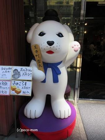 奈良 雪丸 IMG_1344
