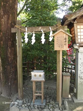 仙台大崎八幡宮 遥拝所 P4290366