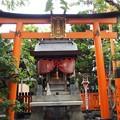 Photos: 祇園白川 P8150633