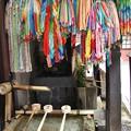 Photos: 仲源寺 P8150643