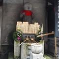 Photos: 仲源寺 P8150644