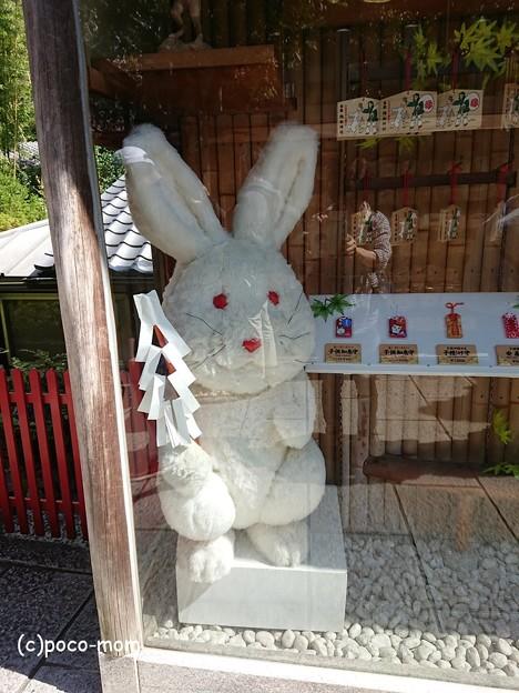 地主神社 因幡の白兎 Dpd-GJDUcAAJesz
