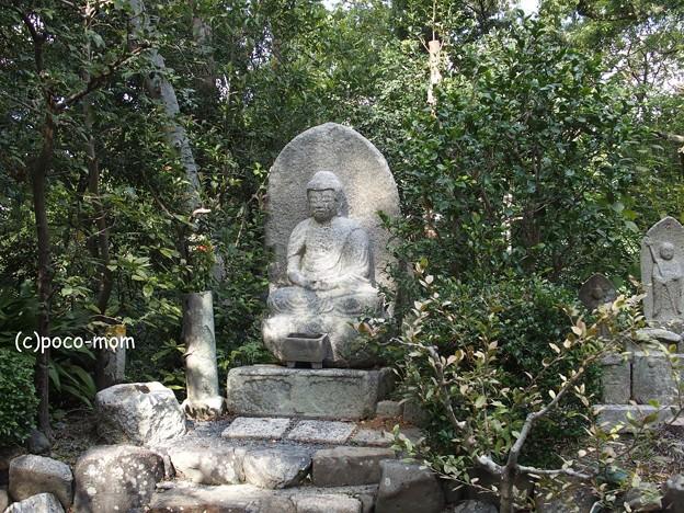 京都 安養寺 円山公園 PA140843