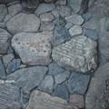 Photos: 金閣寺 PA210975