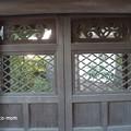 Photos: 金閣寺 PA210977