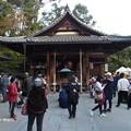 Photos: 金閣寺 PA210978