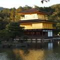 Photos: 金閣寺PA210962