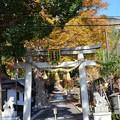 Photos: 菅浦集落 須賀神社 DSC_0730
